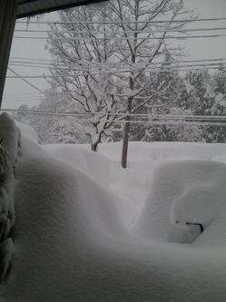 大雪1月14日
