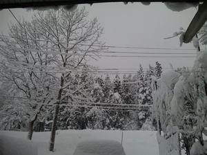 大雪20101225