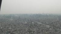 東京タワーが見える