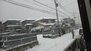 さいたま市 雪景色